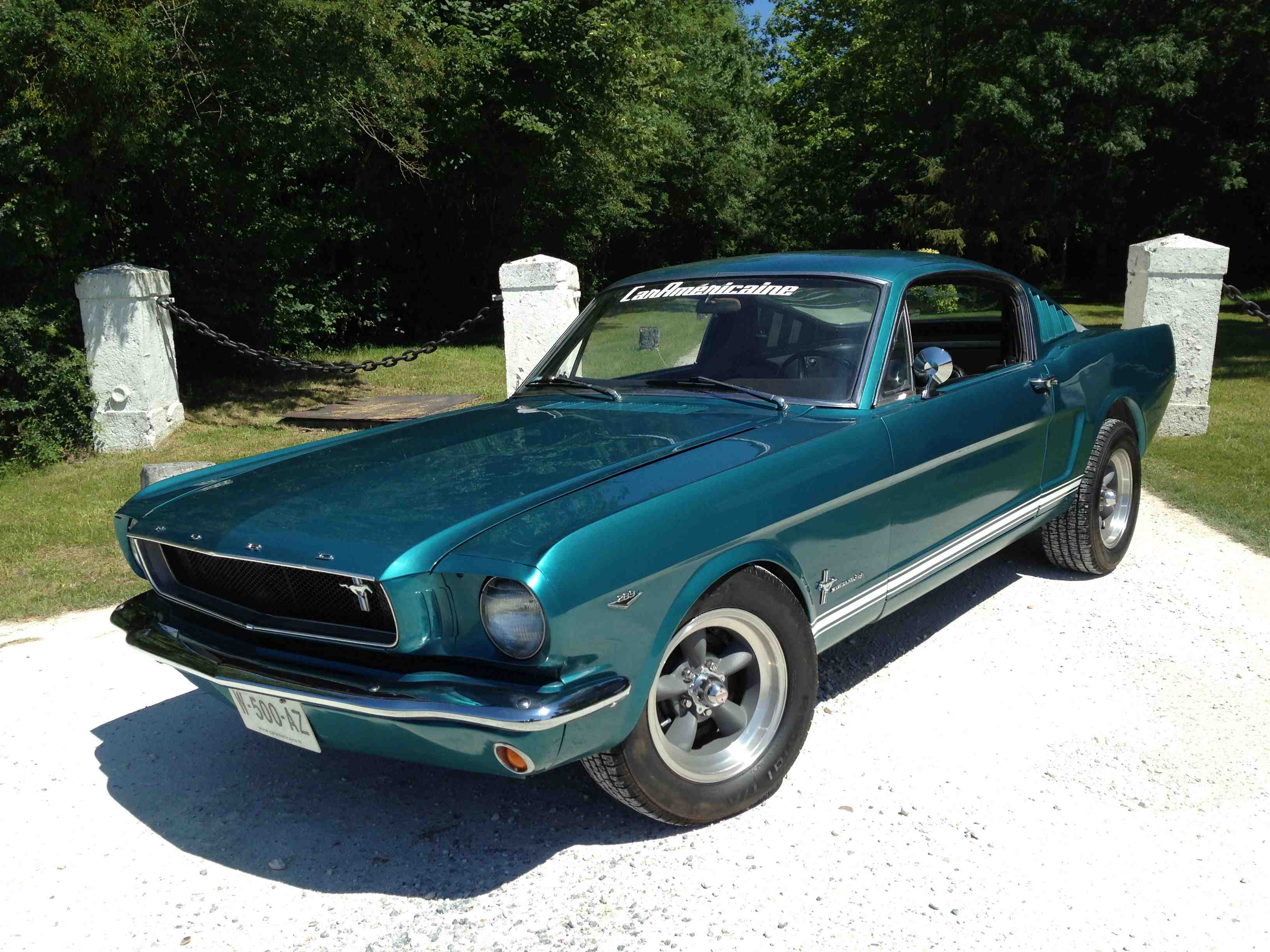 eleanor ford mustang occasion